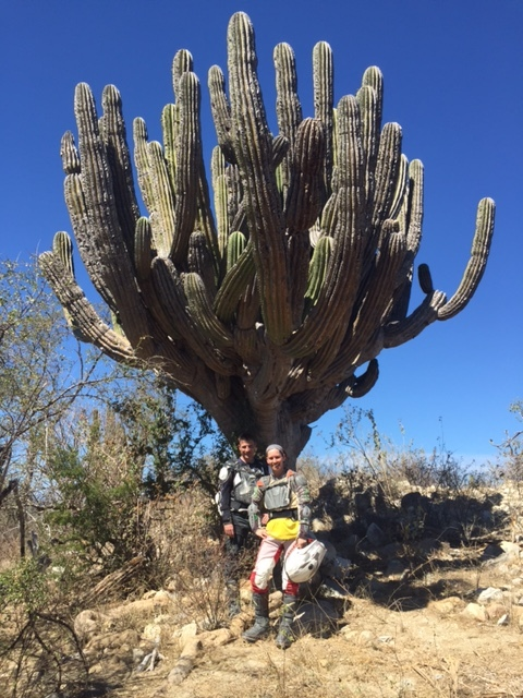 posing before an old Baja cactus